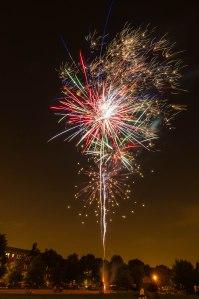 Winnemac Park Fireworks 2013NealNiemiec