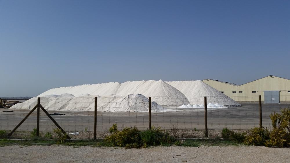 Blog Mar Menor salt