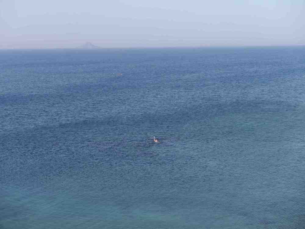 Blog swimming mar menor